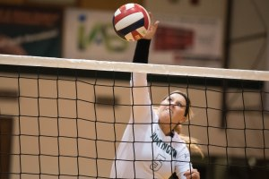MIDDLE HIT: Junior Danielle Gurwell spikes the ball in a home Forester home match. (photo provided)